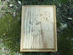 Cougar Totem Spirit Oak Accent Box
