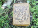 Welsh Royal Dragon Tarot Box