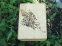 Magick Fairy Goddess Tarot Box