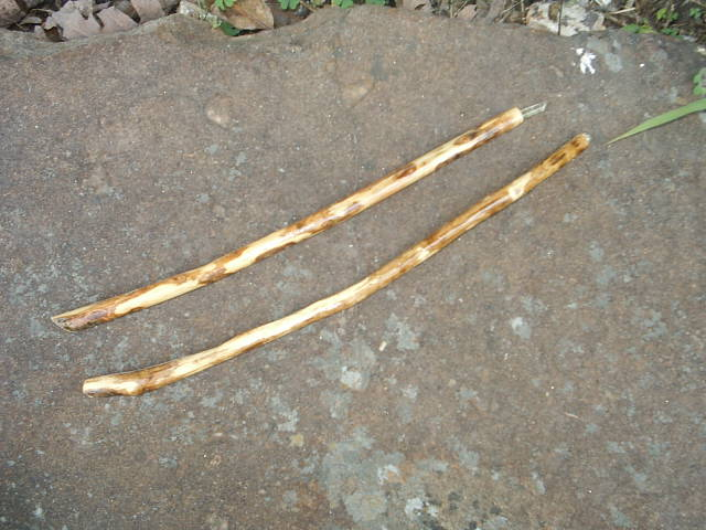 Authentic Natural Oak Witches Wands Magickal Longevity