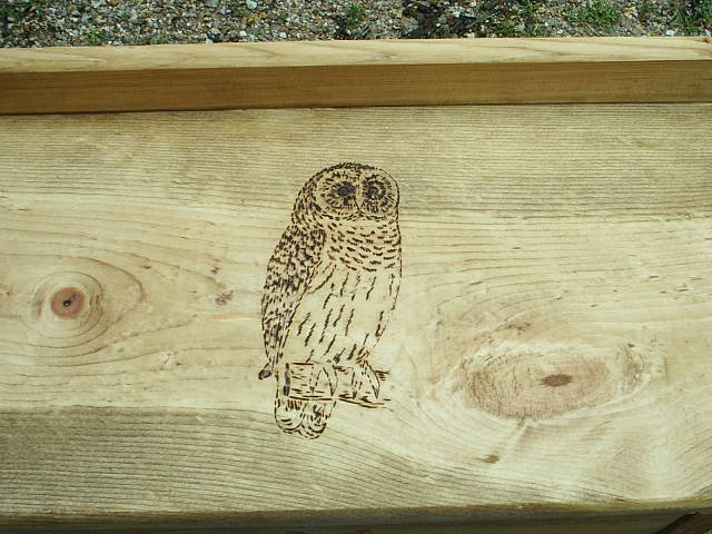 totem owl spirit guide suite101 2015 personal blog